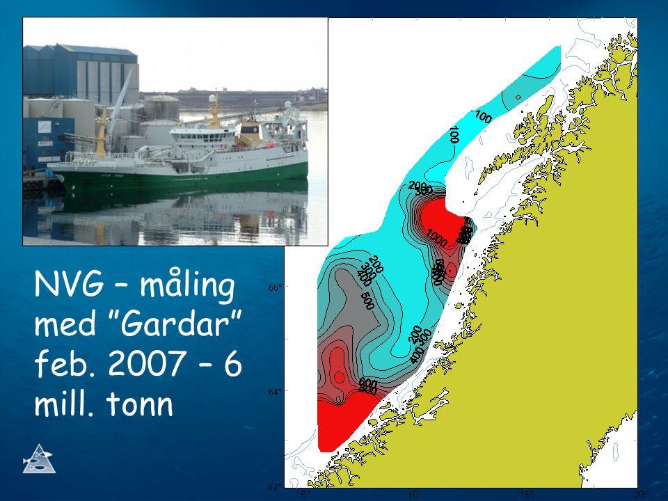 NVG – måling med Gardar feb. 2007 – 6 mill. tonn