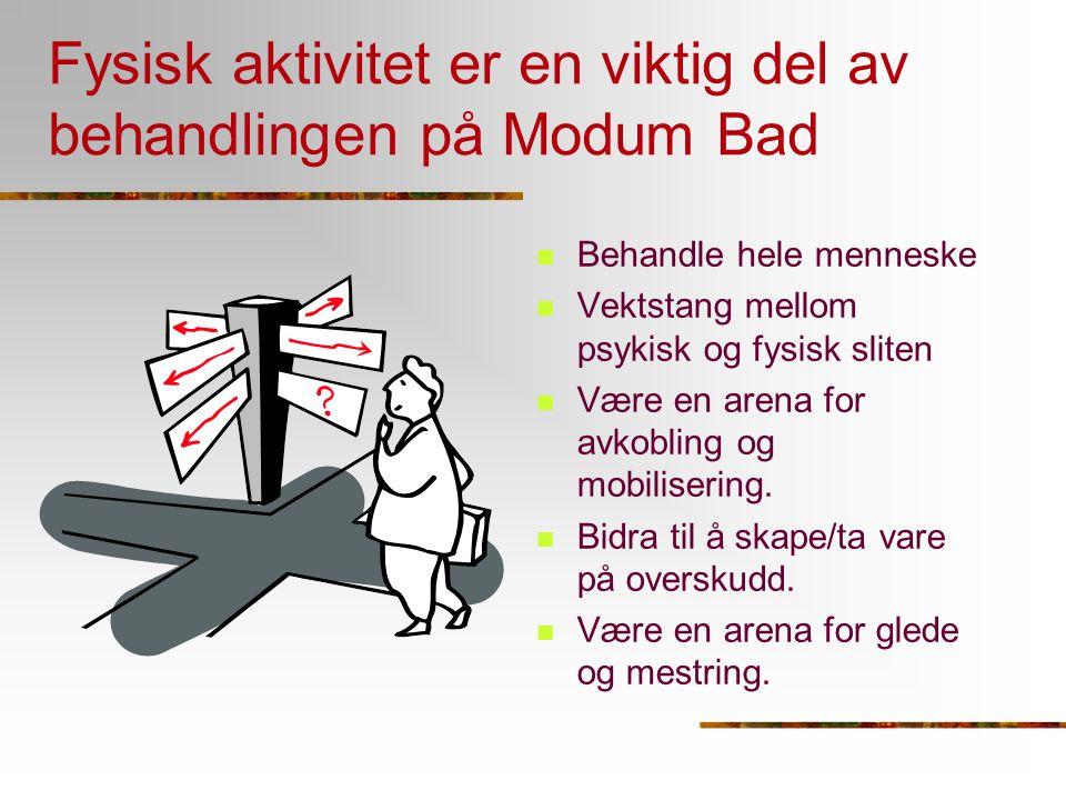 Fysisk aktivitet er en viktig del av behandlingen på Modum Bad Behandle hele menneske Vektstang mellom psykisk og fysisk sliten Være en arena for avko