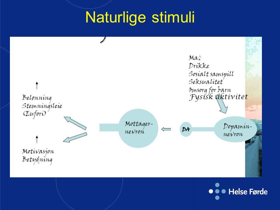 Naturlige stimuli Fysisk aktivitet