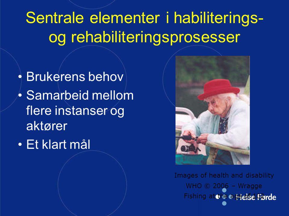 Sentrale elementer i habiliterings- og rehabiliteringsprosesser Brukerens behov Samarbeid mellom flere instanser og aktører Et klart mål Images of hea