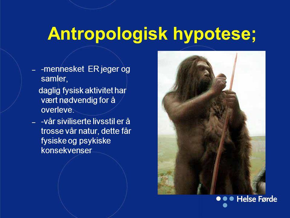 Antropologisk hypotese; – -mennesket ER jeger og samler, daglig fysisk aktivitet har vært nødvendig for å overleve. – -vår siviliserte livsstil er å t