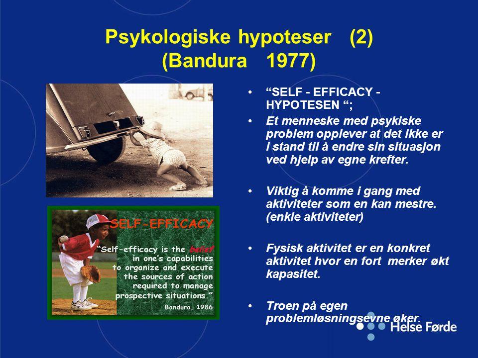 """Psykologiske hypoteser (2) (Bandura 1977) """"SELF - EFFICACY - HYPOTESEN """"; Et menneske med psykiske problem opplever at det ikke er i stand til å endre"""