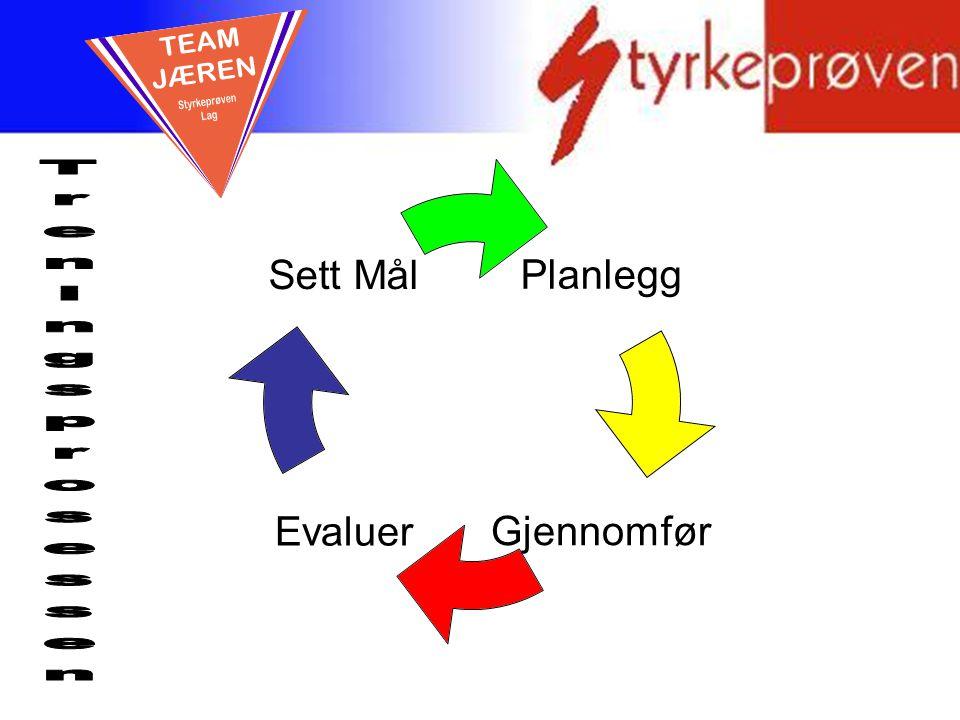 En god prosess Planlegg GjennomførEvaluer Sett Mål