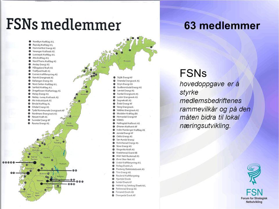 2 FSNs hovedoppgave er å styrke medlemsbedriftenes rammevilkår og på den måten bidra til lokal næringsutvikling.