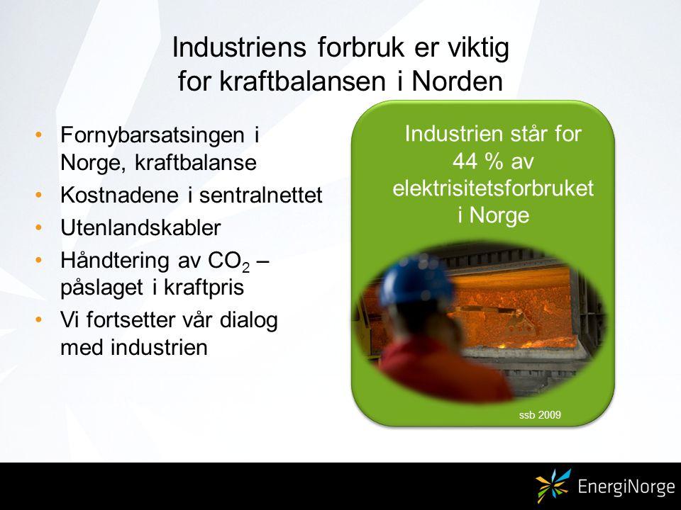 Industriens forbruk er viktig for kraftbalansen i Norden Fornybarsatsingen i Norge, kraftbalanse Kostnadene i sentralnettet Utenlandskabler Håndtering av CO 2 – påslaget i kraftpris Vi fortsetter vår dialog med industrien Industrien står for 44 % av elektrisitetsforbruket i Norge ssb 2009