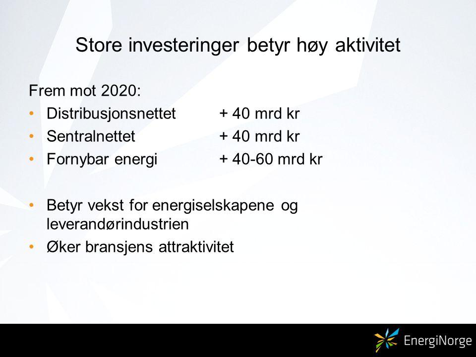 Store investeringer betyr høy aktivitet Frem mot 2020: Distribusjonsnettet + 40 mrd kr Sentralnettet+ 40 mrd kr Fornybar energi+ 40-60 mrd kr Betyr vekst for energiselskapene og leverandørindustrien Øker bransjens attraktivitet