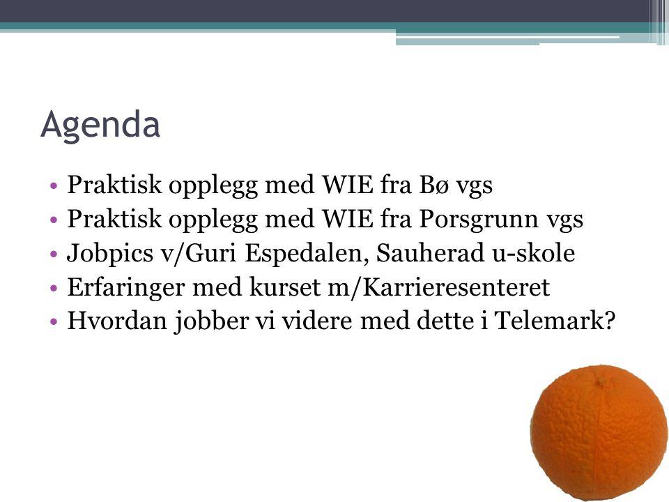 Agenda Praktisk opplegg med WIE fra Bø vgs Praktisk opplegg med WIE fra Porsgrunn vgs Jobpics v/Guri Espedalen, Sauherad u-skole Erfaringer med kurset m/Karrieresenteret Hvordan jobber vi videre med dette i Telemark