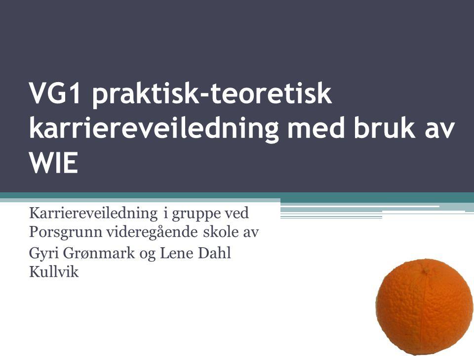 VG1 praktisk-teoretisk karriereveiledning med bruk av WIE Karriereveiledning i gruppe ved Porsgrunn videregående skole av Gyri Grønmark og Lene Dahl Kullvik