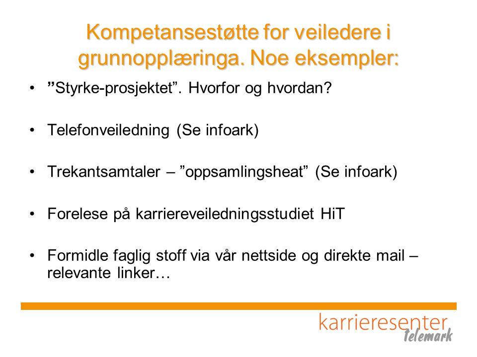 Kompetansestøtte for veiledere i grunnopplæringa. Noe eksempler: Styrke-prosjektet .