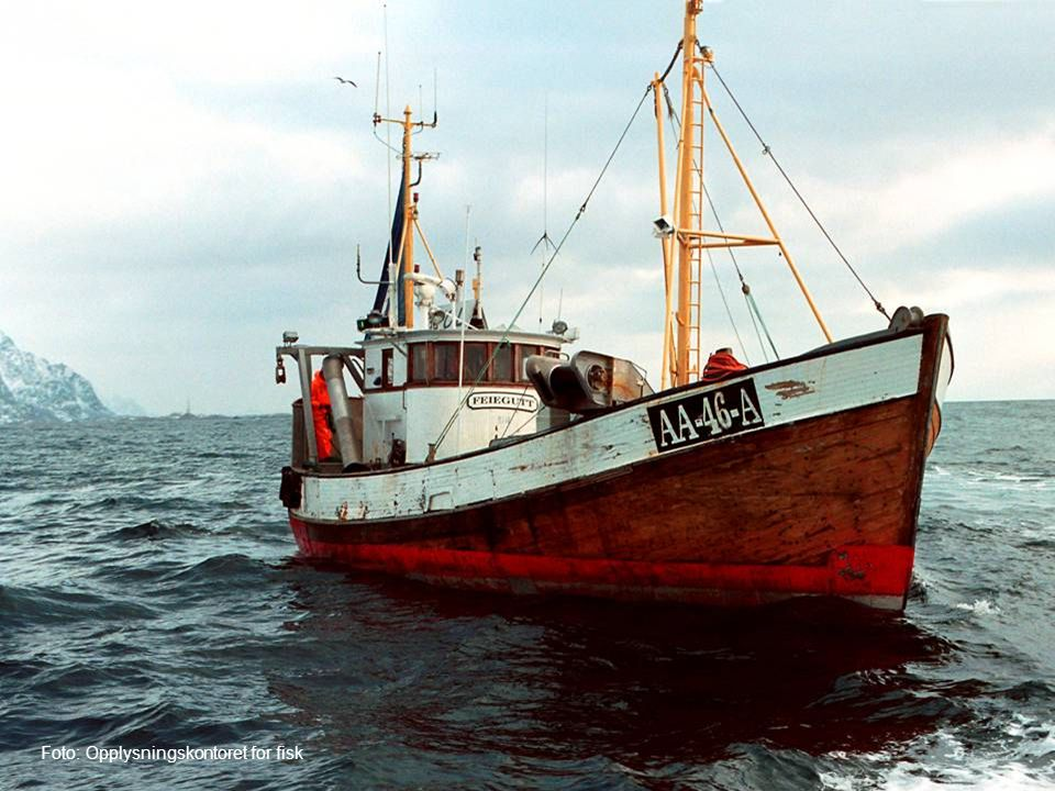 Fisk Foto: Opplysningskontoret for fisk