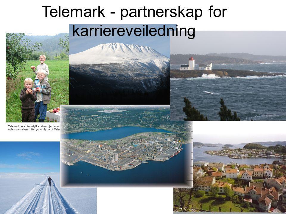 Telemark - partnerskap for karriereveiledning