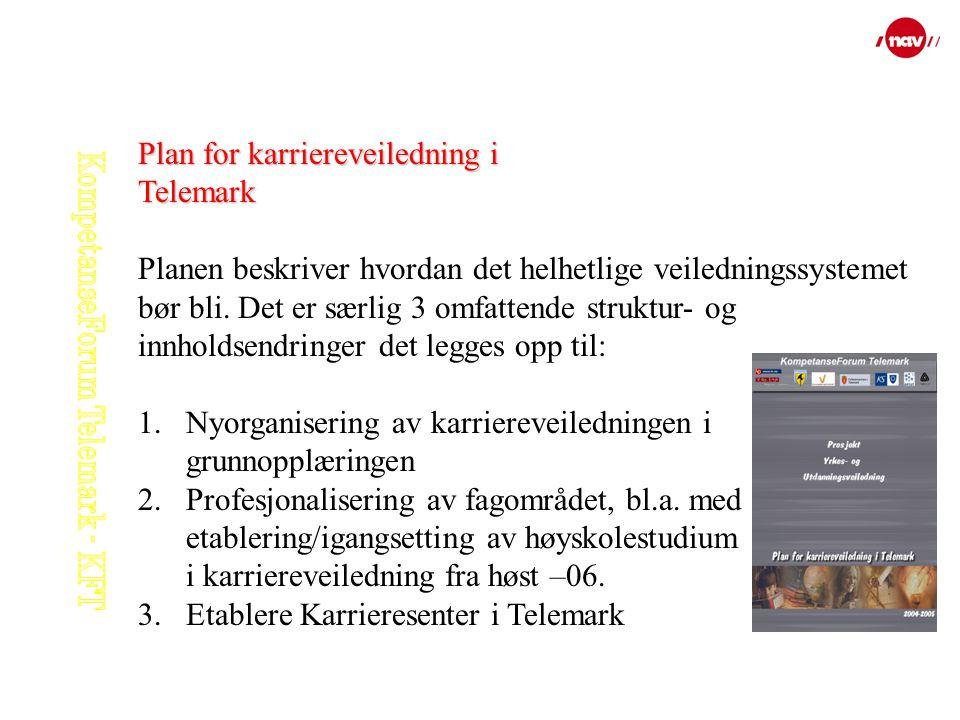 Plan for karriereveiledning i Telemark Planen beskriver hvordan det helhetlige veiledningssystemet bør bli. Det er særlig 3 omfattende struktur- og in