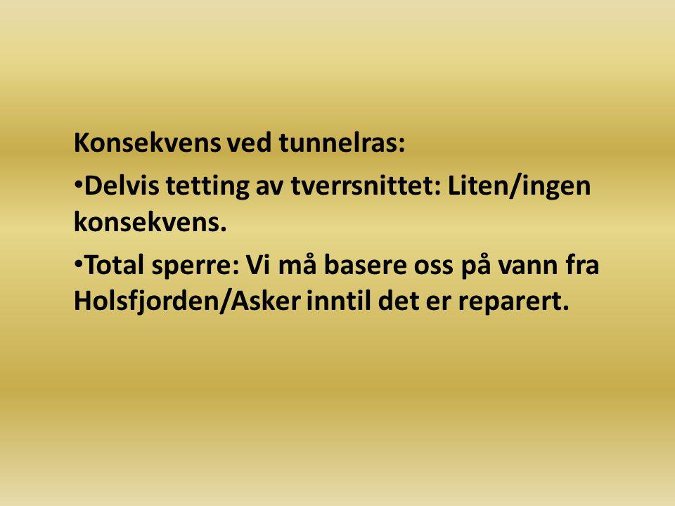 Konsekvens ved tunnelras: Delvis tetting av tverrsnittet: Liten/ingen konsekvens. Total sperre: Vi må basere oss på vann fra Holsfjorden/Asker inntil