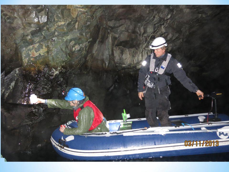 Inspeksjoner og undersøkelser Vannkvalitetsovervåking Hydrogeologi og innlekking Fjellsikkerhet Betong Inspeksjon og analyse av slam og belegg.