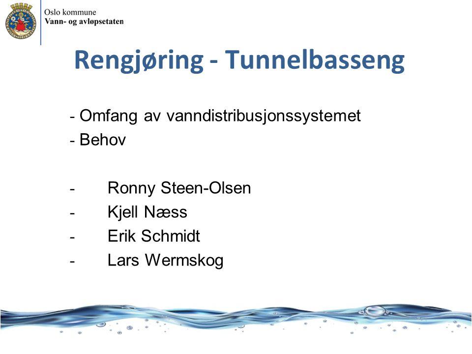 Rengjøring - Tunnelbasseng - Omfang av vanndistribusjonssystemet - Behov - Ronny Steen-Olsen - Kjell Næss - Erik Schmidt - Lars Wermskog