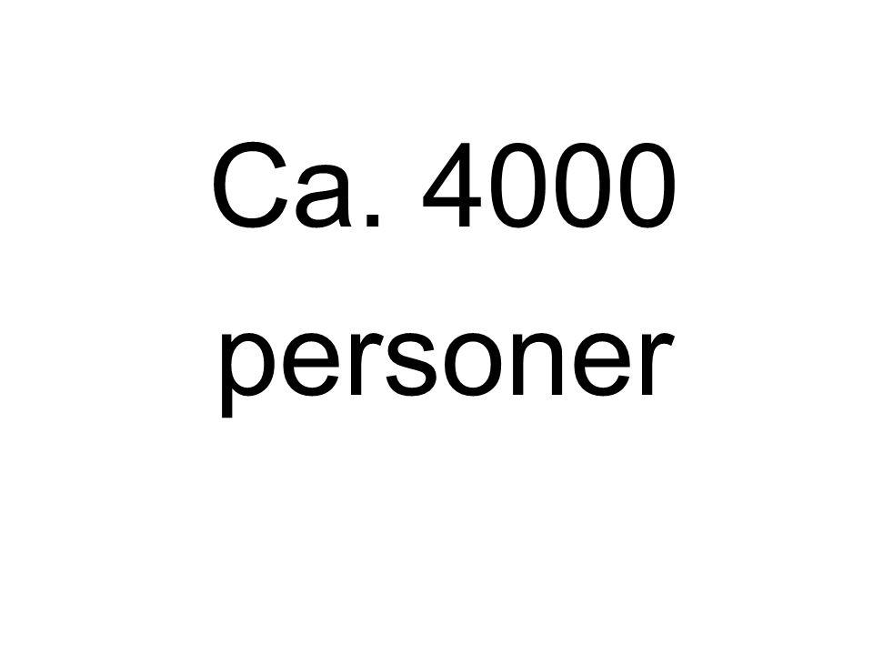 Ca. 4000 personer