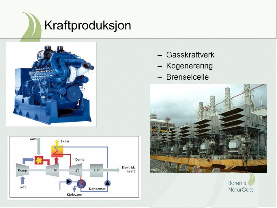 Kraftproduksjon –Gasskraftverk –Kogenerering –Brenselcelle