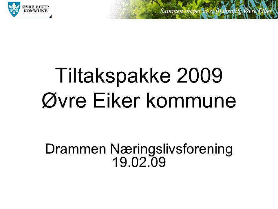 Tiltakspakke 2009 Øvre Eiker kommune Drammen Næringslivsforening 19.02.09