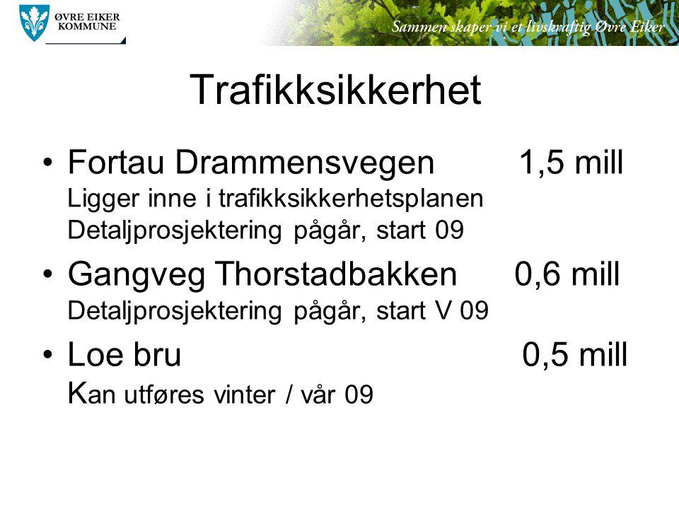 Trafikksikkerhet Fortau Drammensvegen 1,5 mill Ligger inne i trafikksikkerhetsplanen Detaljprosjektering pågår, start 09 Gangveg Thorstadbakken 0,6 mill Detaljprosjektering pågår, start V 09 Loe bru 0,5 mill K an utføres vinter / vår 09