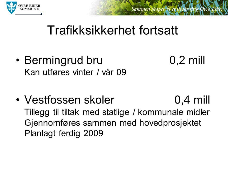 Trafikksikkerhet fortsatt Bermingrud bru 0,2 mill Kan utføres vinter / vår 09 Vestfossen skoler 0,4 mill Tillegg til tiltak med statlige / kommunale midler Gjennomføres sammen med hovedprosjektet Planlagt ferdig 2009