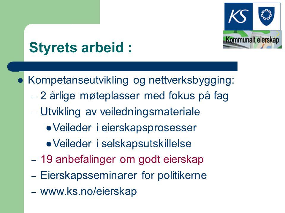 Styrets arbeid : Kompetanseutvikling og nettverksbygging: – 2 årlige møteplasser med fokus på fag – Utvikling av veiledningsmateriale Veileder i eiers
