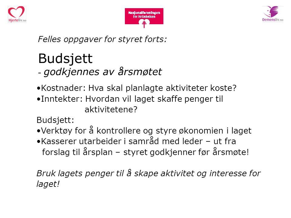Felles oppgaver for styret forts: Budsjett - godkjennes av årsmøtet Kostnader: Hva skal planlagte aktiviteter koste? Inntekter: Hvordan vil laget skaf