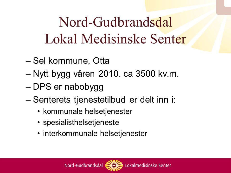 Nord-Gudbrandsdal Lokal Medisinske Senter –Sel kommune, Otta –Nytt bygg våren 2010. ca 3500 kv.m. –DPS er nabobygg –Senterets tjenestetilbud er delt i