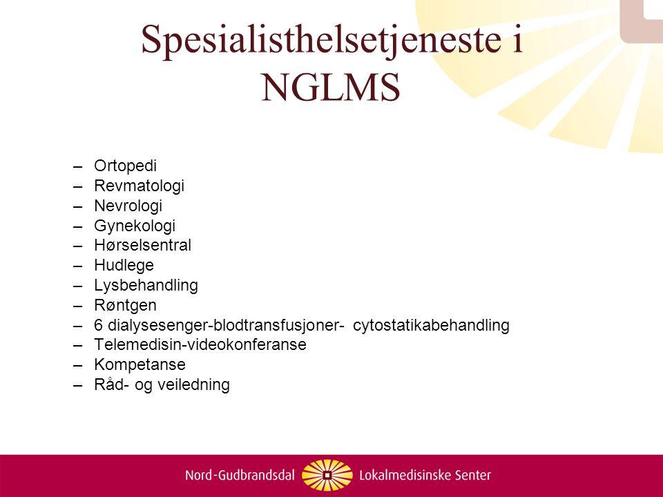 Spesialisthelsetjeneste i NGLMS –Ortopedi –Revmatologi –Nevrologi –Gynekologi –Hørselsentral –Hudlege –Lysbehandling –Røntgen –6 dialysesenger-blodtra