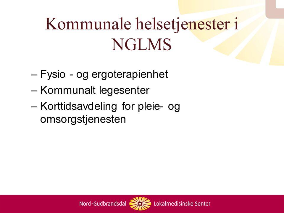 Interkommunalt samarbeid i NGLMS –Prosjekt NGLMS –Legevakt –Legevaktvarsling –5 Intermediære sengeplasser –Fysio-ergo/rehab.