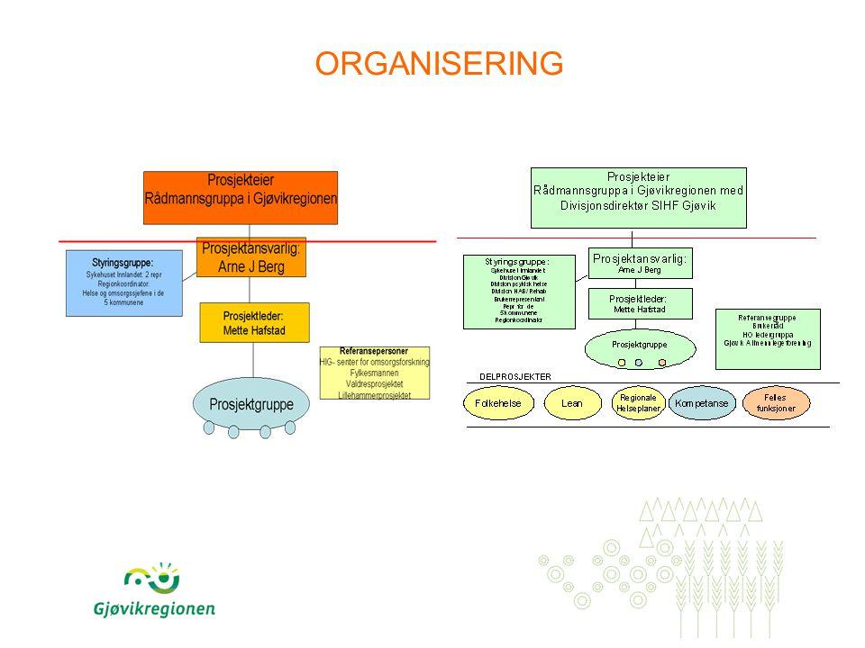 PROSESSEN Engasjement Bred involvering Brukerfokus Løsningsorientert tilnærming Gode prosesser, godt samarbeidsklima for det videre arbeidet
