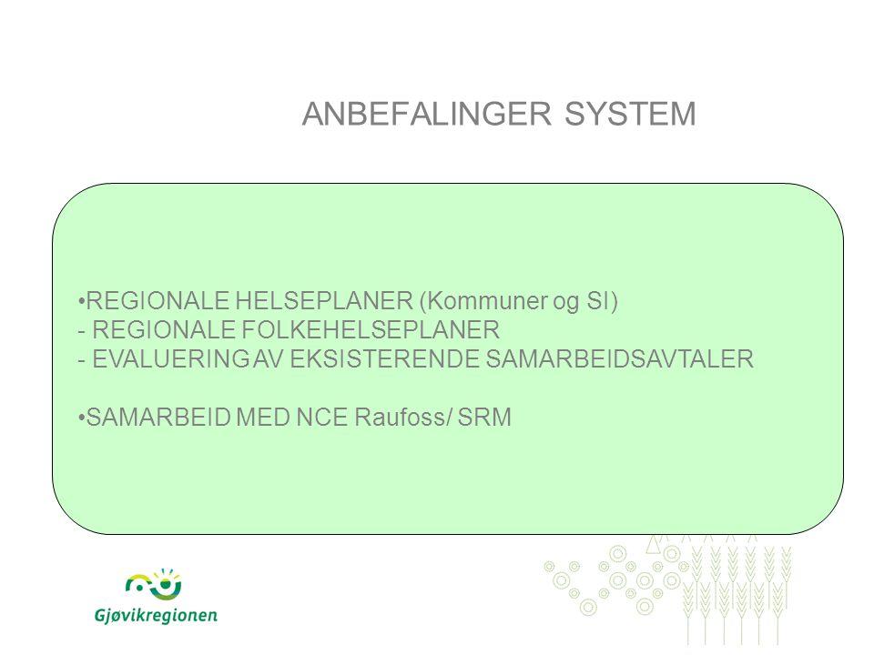 REGIONALE HELSEPLANER (Kommuner og SI) - REGIONALE FOLKEHELSEPLANER - EVALUERING AV EKSISTERENDE SAMARBEIDSAVTALER SAMARBEID MED NCE Raufoss/ SRM ANBEFALINGER SYSTEM