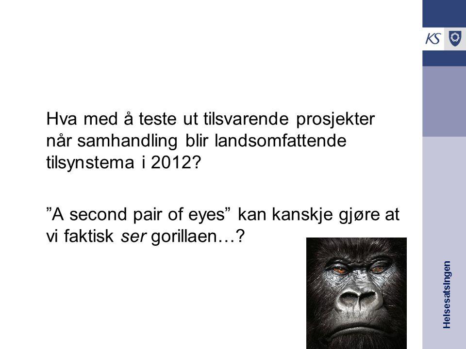"""Helsesatsingen Hva med å teste ut tilsvarende prosjekter når samhandling blir landsomfattende tilsynstema i 2012? """"A second pair of eyes"""" kan kanskje"""