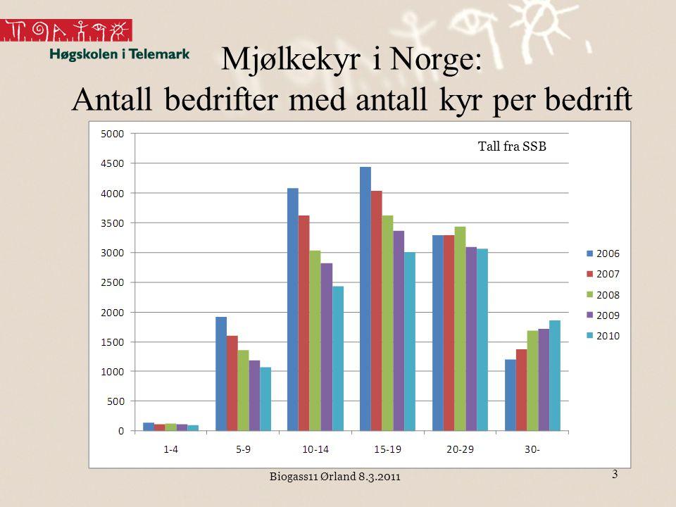 Biogass11 Ørland 8.3.2011 Hva er biogassen verdt – 60 melkekyr Regner 300 m 3 CH 4 per år og ku Gir 18 000 m 3 CH 4 per år –Tar her ikke hensyn til energibruk i prosess Tilsvarer ca 18 000 liter diesel på energibasis Verdi diesel: 6,60 kr/liter - > 118 000 kr/år –Regnet inkl.