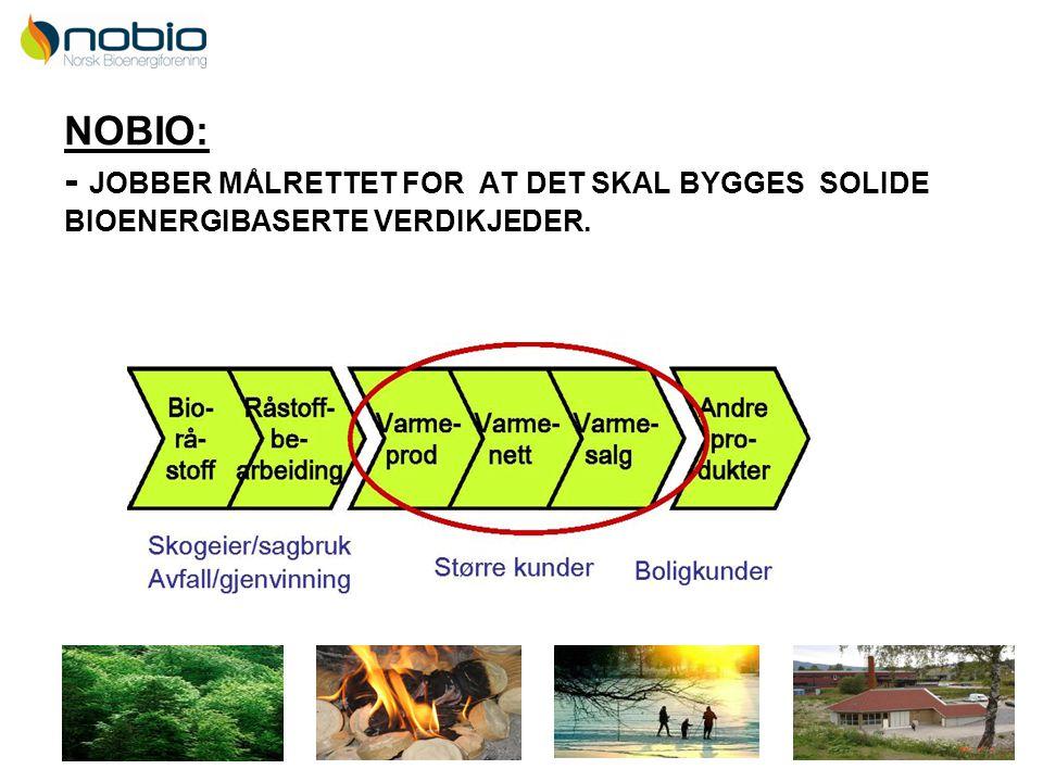 9 NOBIO: - JOBBER MÅLRETTET FOR AT DET SKAL BYGGES SOLIDE BIOENERGIBASERTE VERDIKJEDER.