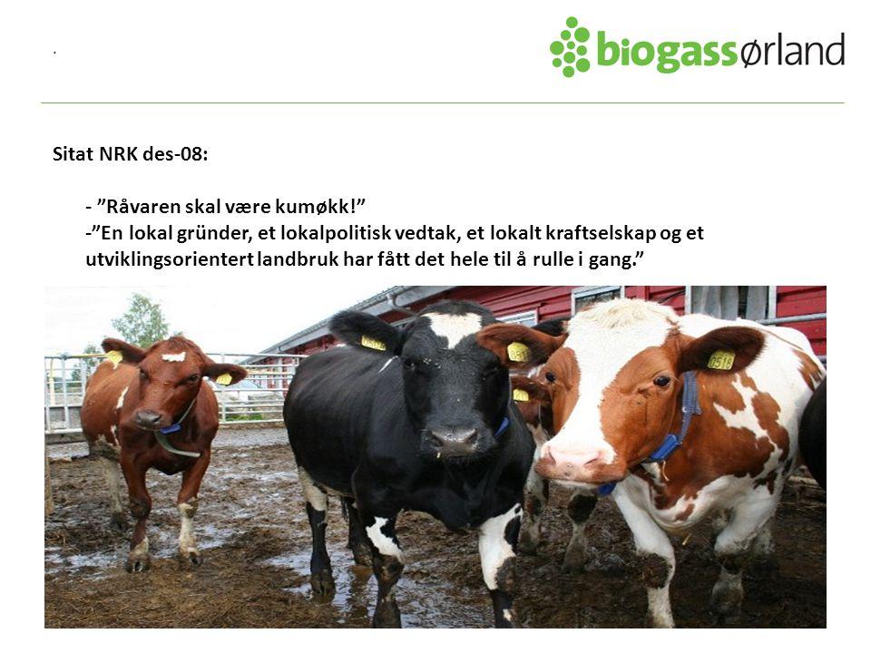 . Sitat NRK des-08: - Råvaren skal være kumøkk! - En lokal gründer, et lokalpolitisk vedtak, et lokalt kraftselskap og et utviklingsorientert landbruk har fått det hele til å rulle i gang.