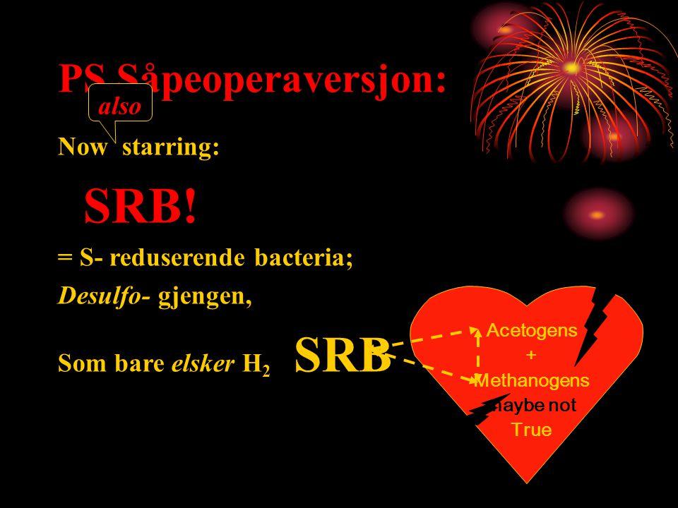 PS Såpeoperaversjon: Now starring: SRB! = S- reduserende bacteria; Desulfo- gjengen, Som bare elsker H 2 SRB Acetogens + Methanogens maybe not True al