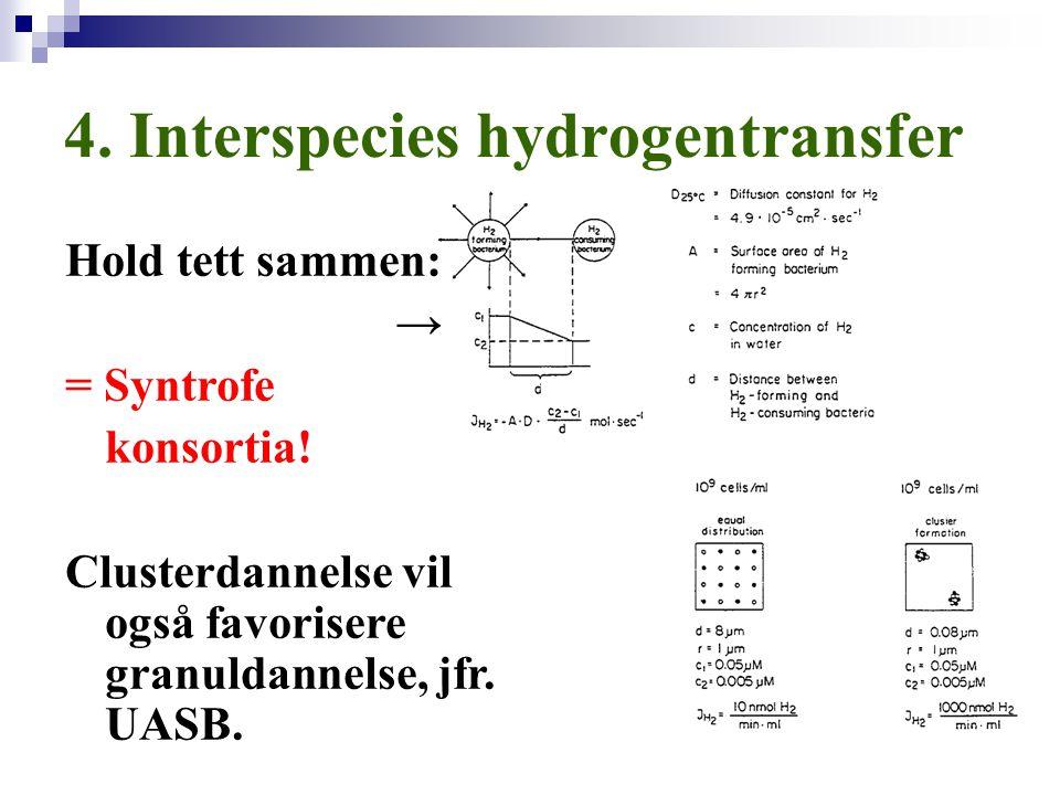 4. Interspecies hydrogentransfer Hold tett sammen: → = Syntrofe konsortia! Clusterdannelse vil også favorisere granuldannelse, jfr. UASB.