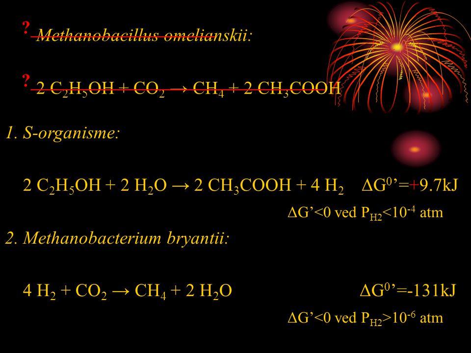 Methanobacillus omelianskii: 2 C 2 H 5 OH + CO 2 → CH 4 + 2 CH 3 COOH 1. S-organisme: 2 C 2 H 5 OH + 2 H 2 O → 2 CH 3 COOH + 4 H 2 ΔG 0 '=+9.7kJ ΔG'<0
