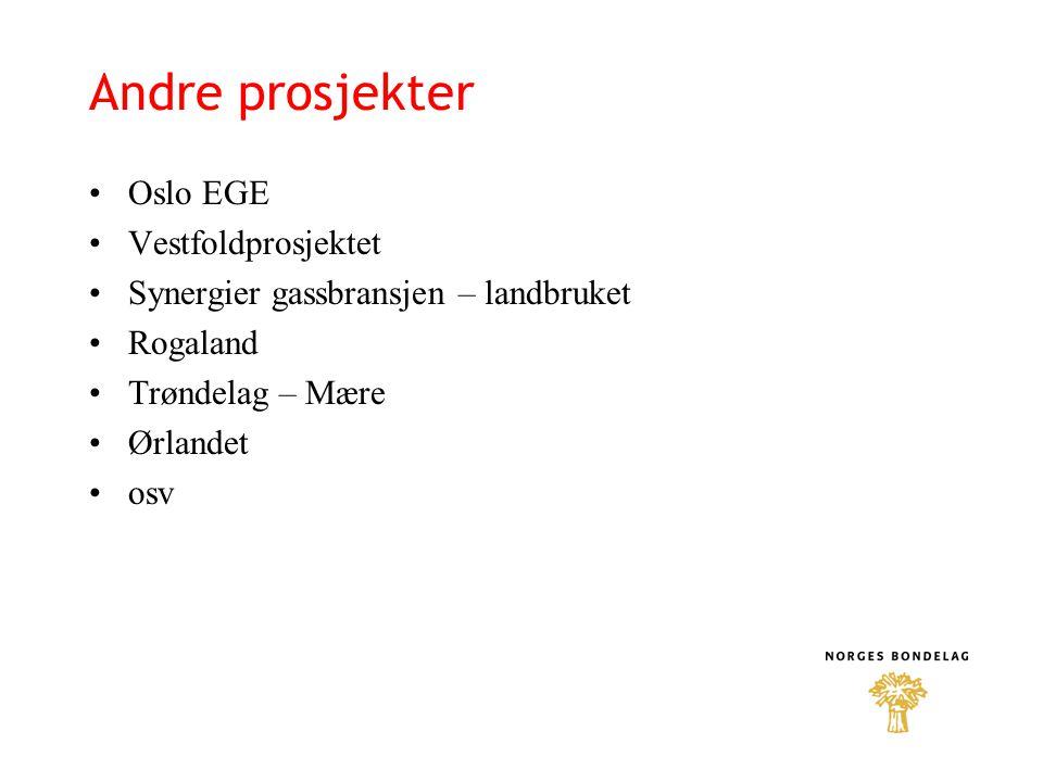 Andre prosjekter Oslo EGE Vestfoldprosjektet Synergier gassbransjen – landbruket Rogaland Trøndelag – Mære Ørlandet osv