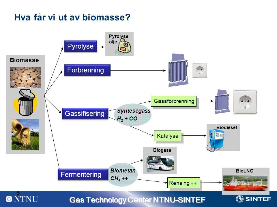 Gas Technology Center NTNU-SINTEF 5 Hva får vi ut av biomasse.