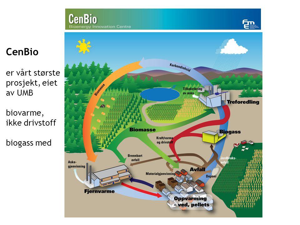 CenBio er vårt største prosjekt, eiet av UMB biovarme, ikke drivstoff biogass med