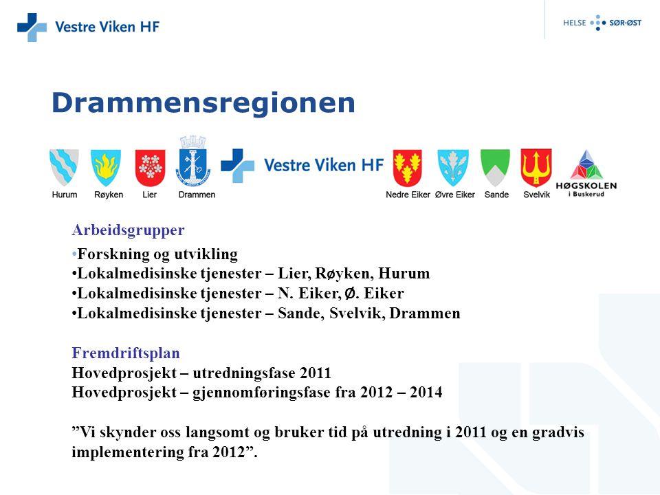 Drammensregionen Arbeidsgrupper Forskning og utvikling Lokalmedisinske tjenester – Lier, R ø yken, Hurum Lokalmedisinske tjenester – N. Eiker, Ø. Eike