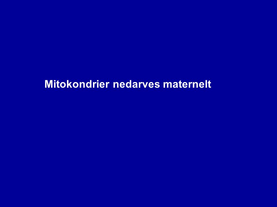 Mitokondrier nedarves maternelt