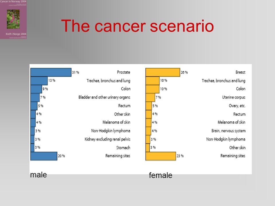 The cancer scenario male female