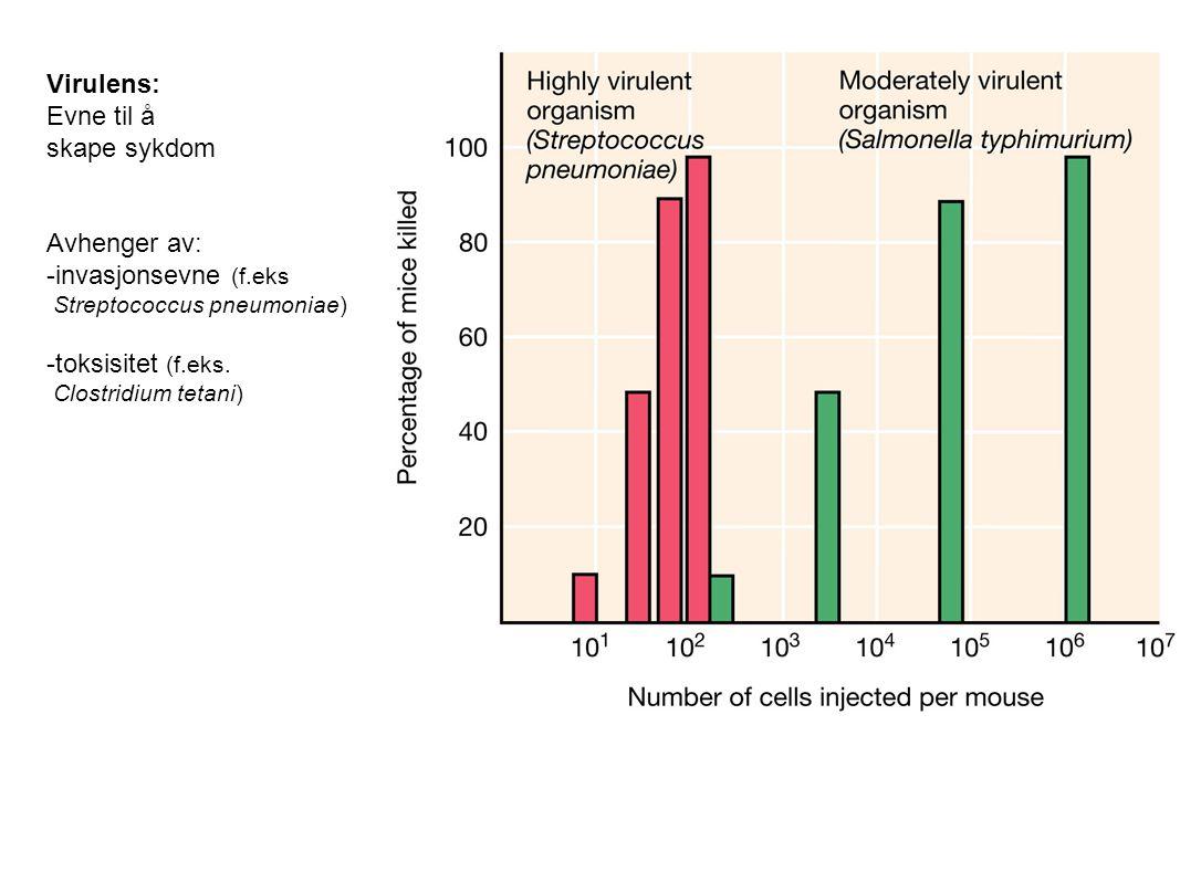 Virulens: Evne til å skape sykdom Avhenger av: -invasjonsevne (f.eks Streptococcus pneumoniae) -toksisitet (f.eks. Clostridium tetani)