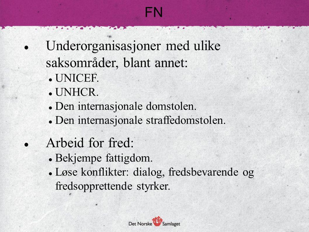 Underorganisasjoner med ulike saksområder, blant annet: UNICEF. UNHCR. Den internasjonale domstolen. Den internasjonale straffedomstolen. Arbeid for f