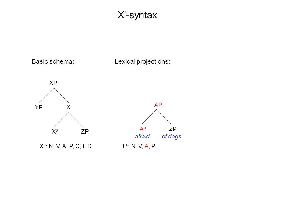 XP X' X0X0 YP ZP AP A0A0 ZP X'-syntax X 0 : N, V, A, P, C, I, DL 0 : N, V, A, P Basic schema: afraidof dogs Lexical projections:
