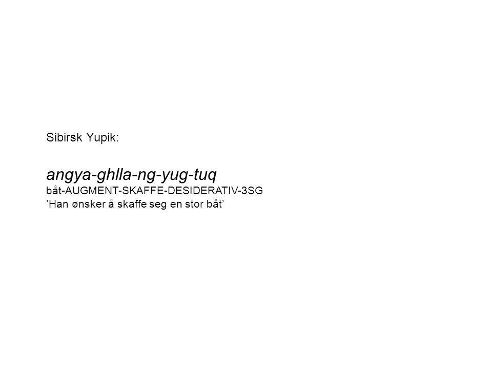 Sibirsk Yupik: angya-ghlla-ng-yug-tuq båt-AUGMENT-SKAFFE-DESIDERATIV-3SG 'Han ønsker å skaffe seg en stor båt'