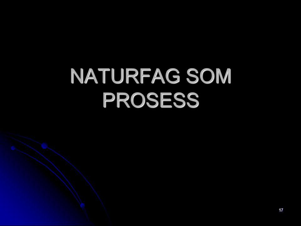 17 NATURFAG SOM PROSESS