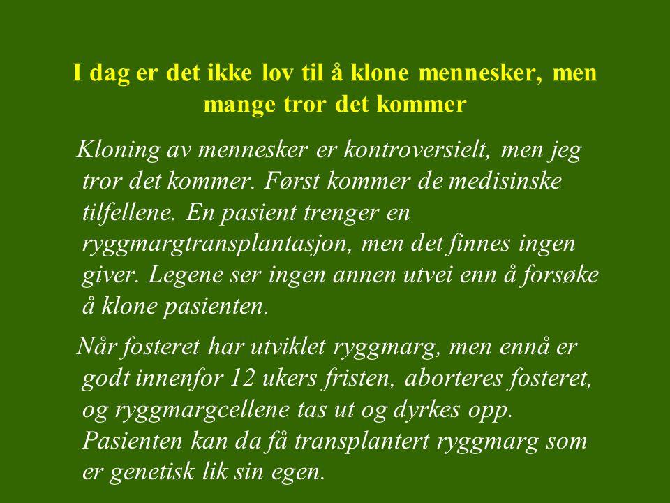 Etikk Motivasjon: –Lese tekst av Heidi Sørensen med framtidsscenario Input –KRL: Etikk, verdier og beslutninger –Samfunnsfag: Etikk, lover og rettigheter